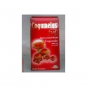 Agaricus blazeii (Cogumelo do Sol) Arte nativa  60 Pills